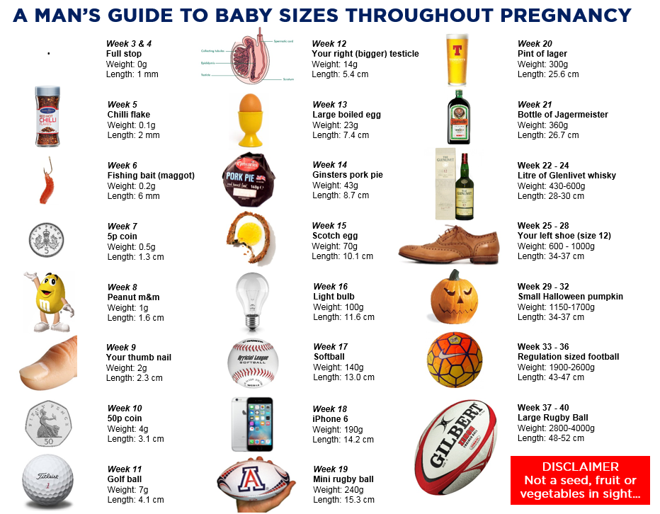 Baby size guide - copyright to YOU THE DADDY blog
