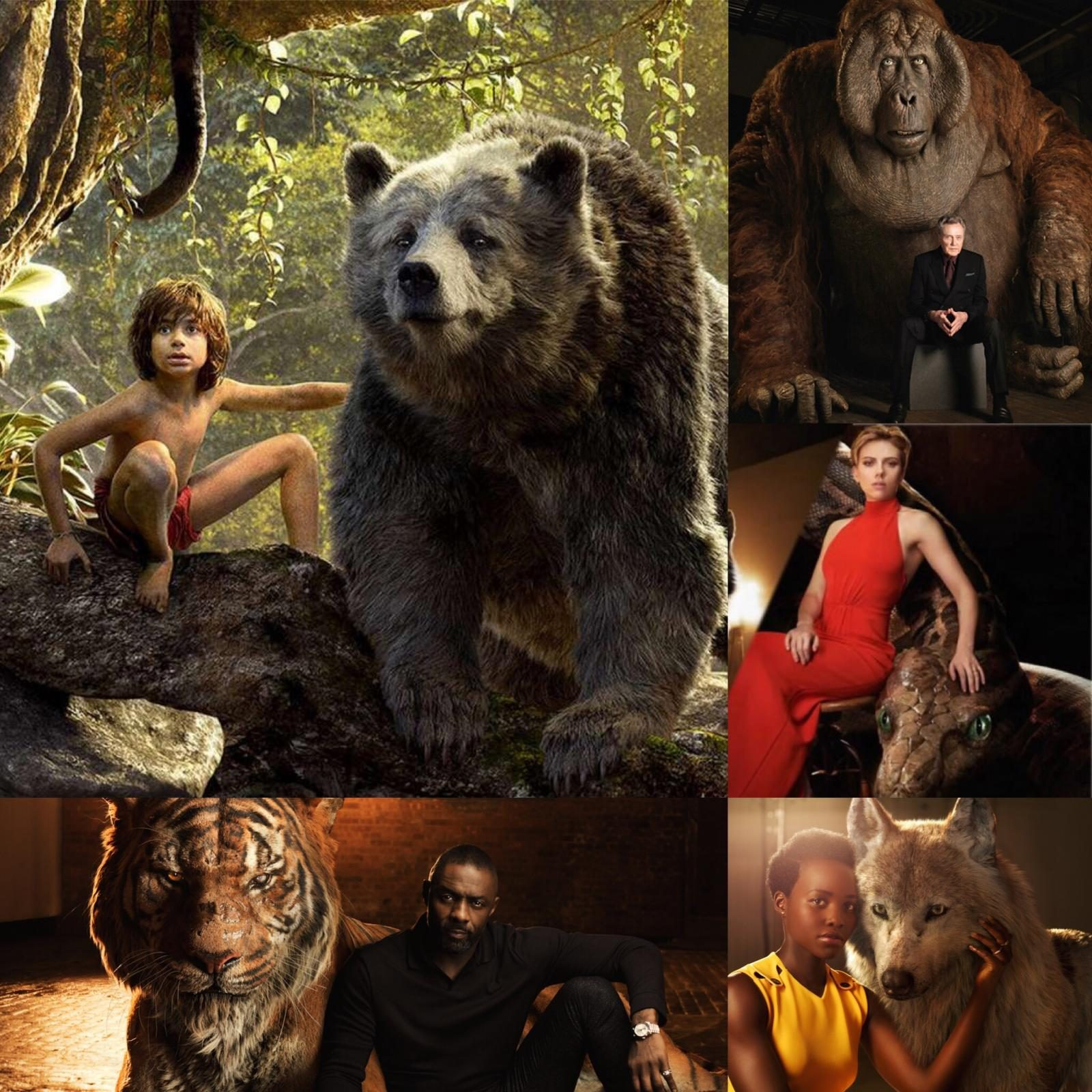 The Jungle Book (2016) cast and characters