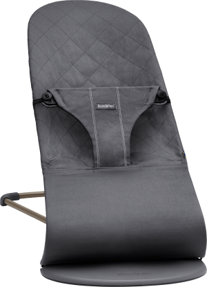 Baby Products - Babybjorn Bouncer Bliss