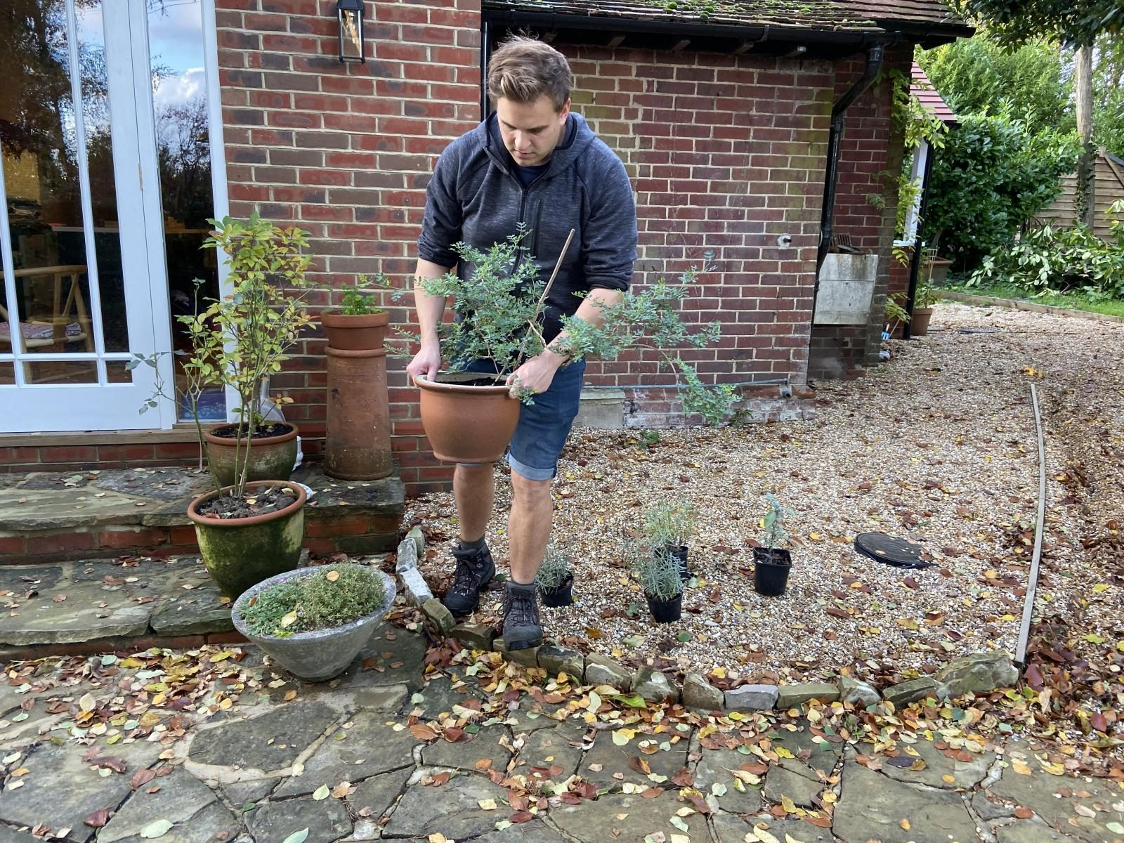 Protect your pots - things to do in the garden this month