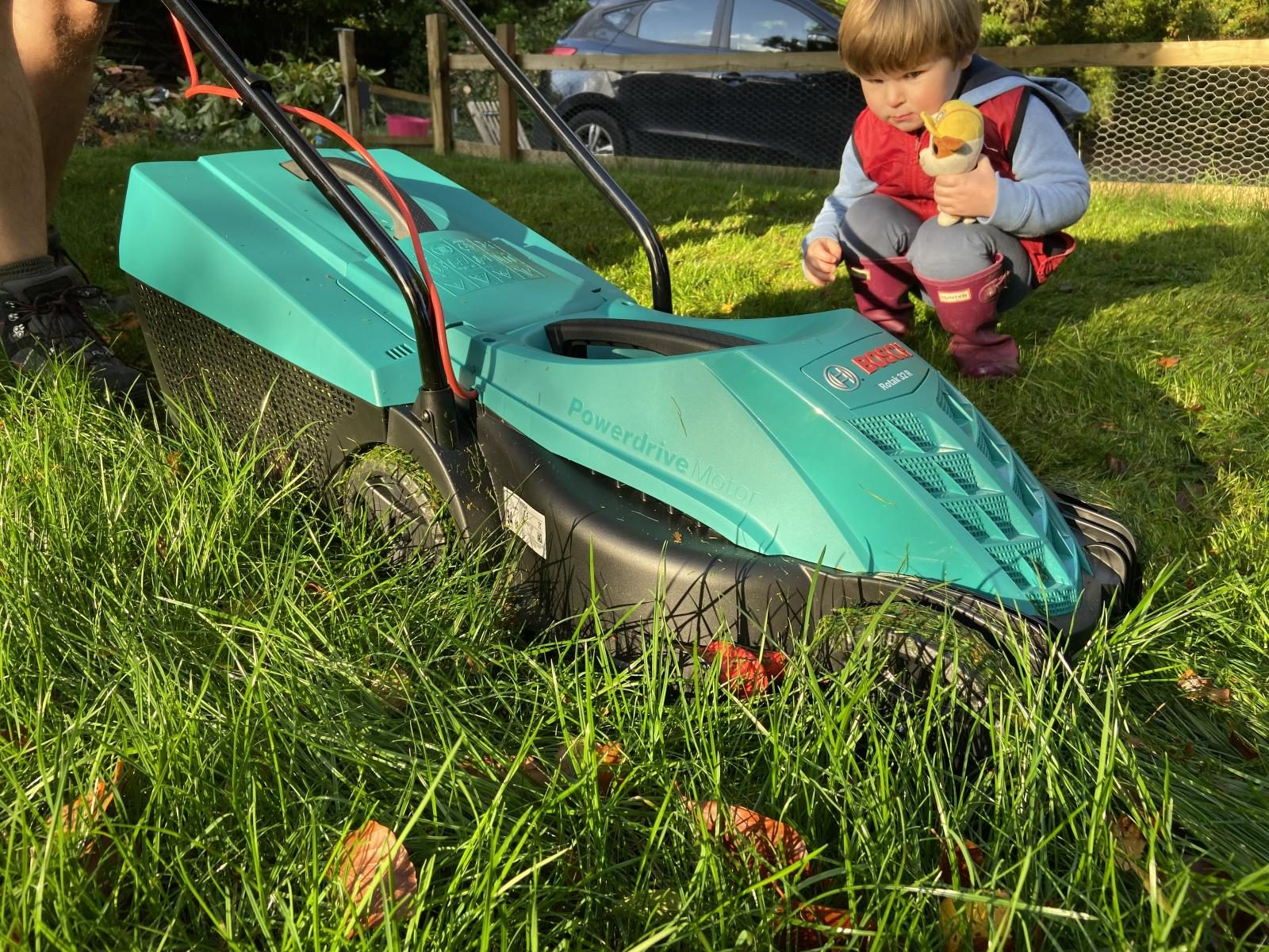 Final mow of the lawn with Bosch lawnmower